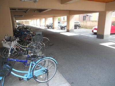 【駐車場】第82杉フラット