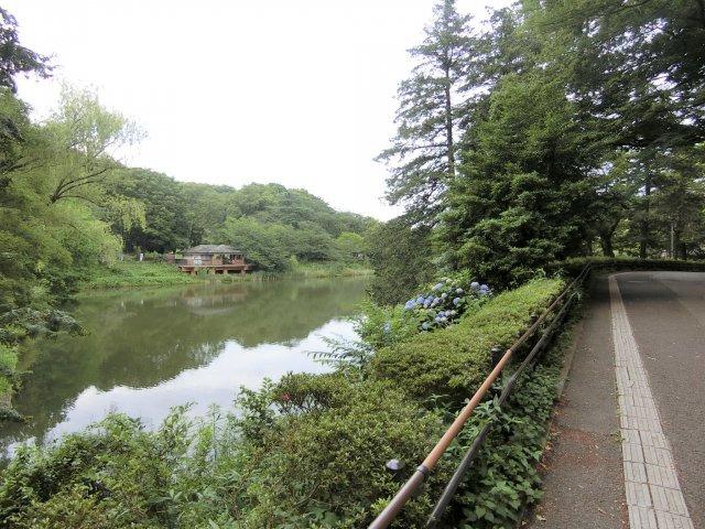 三ッ池公園(徒歩約20分) 「さくら名所100選」に選ばれている公園 三つの池の周りにはたくさんの花々や野鳥が見られる散策コースがあります