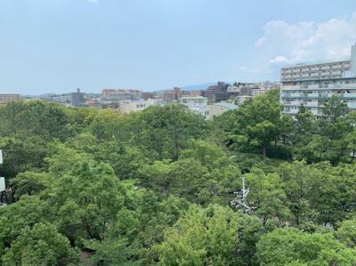 緑が豊富な物件からの眺望です。