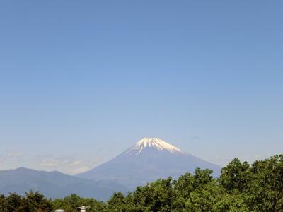 ウッドデッキより富士山を一望できます!