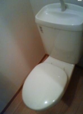 【トイレ】ロワゾ ブルー アンドウ
