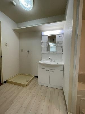 明るい洗面所です(2021年新品入替)