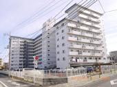 パシフィック武蔵野台ニューハイツの画像
