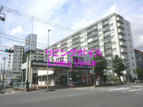 平塚市田村2丁目 サンシャイン平塚 中古マンション