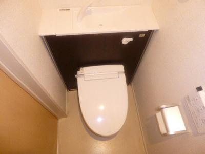 【トイレ】トゥルースワン