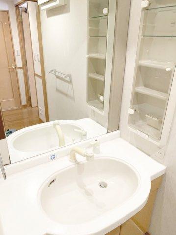 洗面台のボウルは大きめでたっぷり水が溜められるので、シャンプーや、漬け置き洗いにも使えそうです