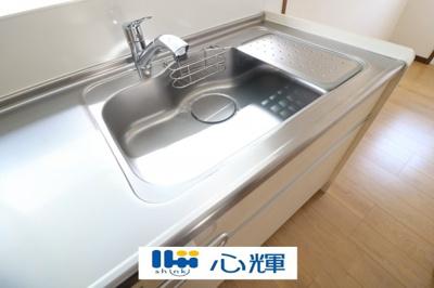 洗練されたデザインのメタルシャワーヘッドは引き出し可能、シンクの隅々まで洗い流すのに大変重宝します。