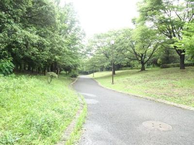自然豊かな富岡八幡公園♪毎日の散歩が楽しみです!