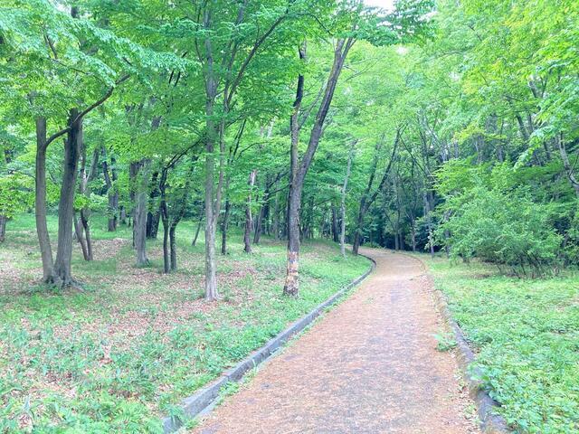 豊ヶ丘公園まで600m