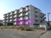 平塚市中原3丁目 コスモ平塚中原 中古マンションの画像