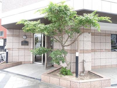 【エントランス】メインステージ錦糸町駅前Ⅱ
