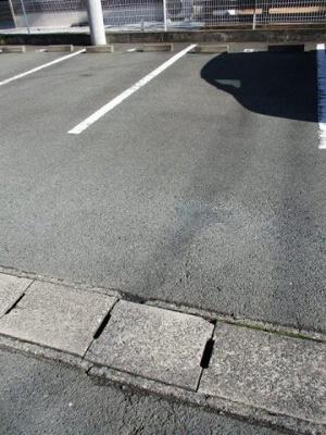 【駐車場】サニーフォレストA