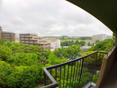 バルコニーからの展望です♪5階とは思えないほどの景色の良さですよ♪緑も多く落ち着きますね♪