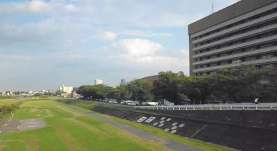 市役所前に広がる河川敷