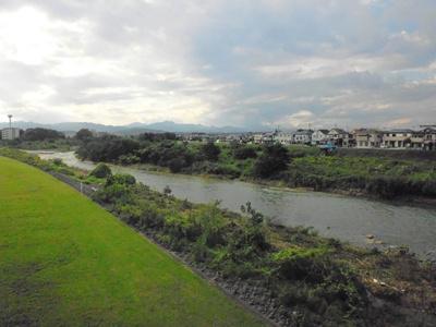 魚やざりがにのいるきれいな浅川