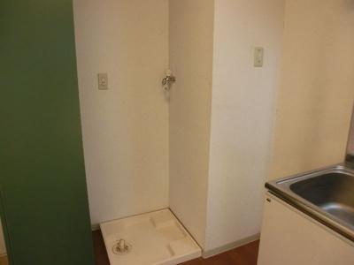 グリーンベルハイツ 307 室内洗濯機置場は必須