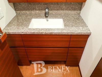Brillia新宿余丁町の独立洗面台です