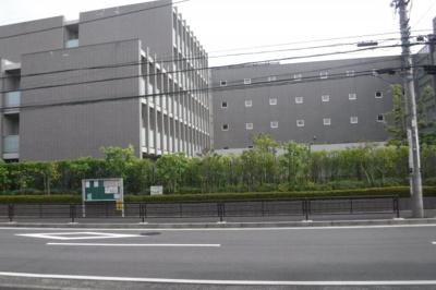 【展望】シャローム・ココ