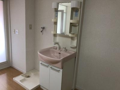 独立洗面台と室内洗濯機置き場です