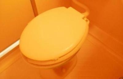 【トイレ】ハウスKナイン