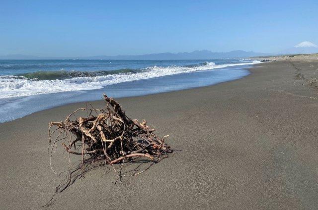 平塚の海まで2.3kmの距離です!