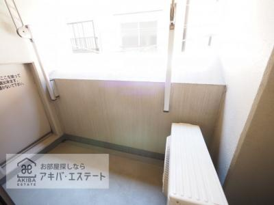 【バルコニー】エステムプラザ日本橋