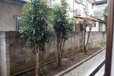 【展望】ローリエ八幡山