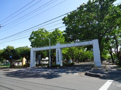 太田市運動公園まで897m