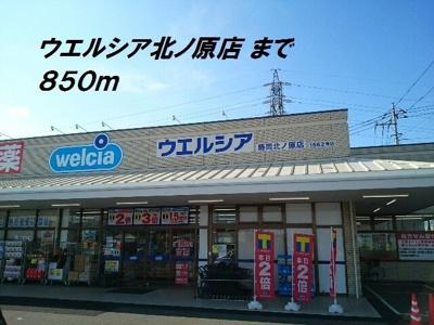 セリアまで650m