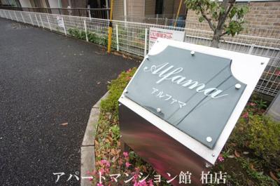 【エントランス】アルファマ