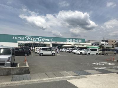 スーパーエバグリーン宮前店(1km)