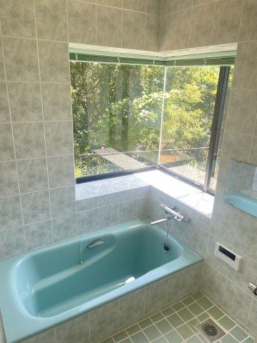 森林を眺めながら入浴ができます。