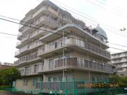 志村サンハイツの画像