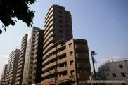 小石川パインマンションの画像