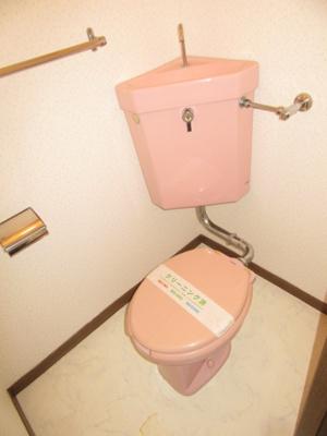 【トイレ】ベルゾーネ 192