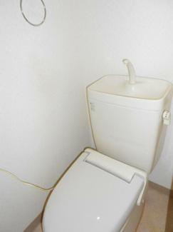 【トイレ】サンセベリア