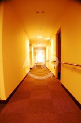 エルザグレース堀江タワー 共用廊下