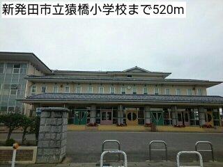 新発田市立猿橋小学校まで520m