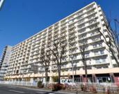 東武大師前サンライトマンションの画像
