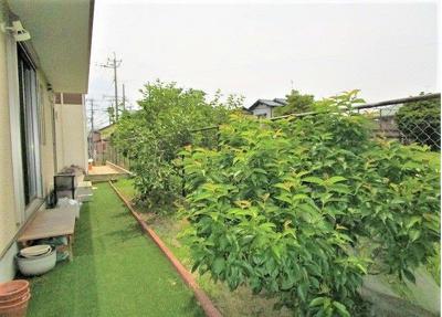 緑の多い庭付き!ガーデニングに最適な環境!