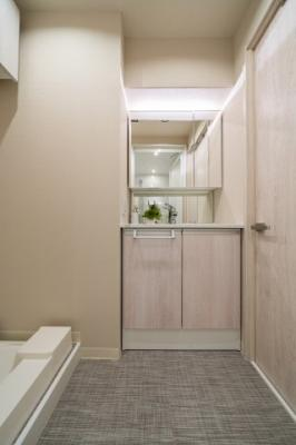 【独立洗面台】フドウパピルスハイツ 3階 リ ノベーション済