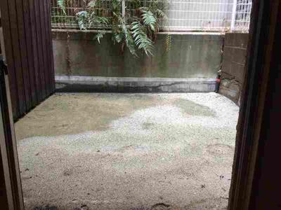 ビバイン平尾 (1DK) 庭