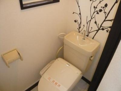 【トイレ】クリスタルコート大橋