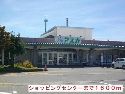 ショッピングセンター アスカまで1600m