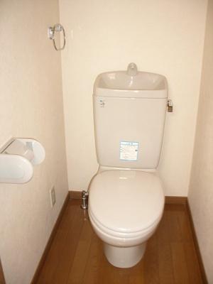 【トイレ】ルーブル旗の台