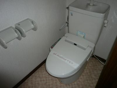 落ち着いたトイレです 同型タイプ