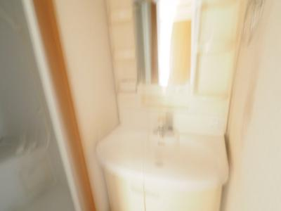 【独立洗面台】フロストハウス
