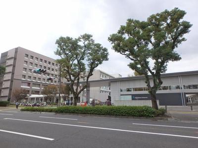国立大学法人鹿児島大学まで433m