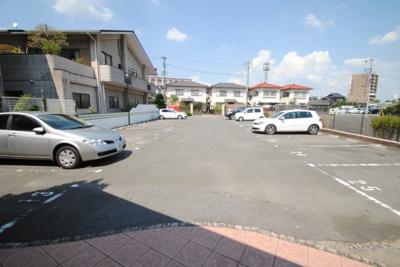【駐車場】プリマヴェーラ花の木