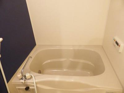 【浴室】セキュレイト ハウス花園A